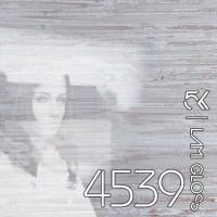 МДФ 5K | Lamigloss |18мм|4539| ясень светлый